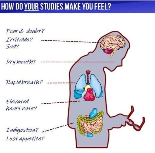 Reduce Exam Stress